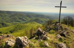 Zaleseni wzgórza Dolinni Zdjęcia Stock