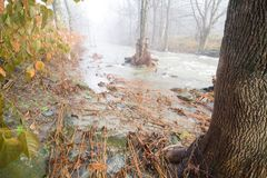 Zalewać w Vermont Zdjęcia Royalty Free