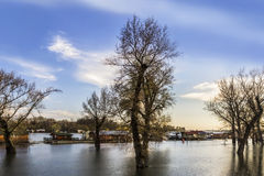 Zalewająca ziemia Z Unosić się domy Przy Sava rzeką - Nowy Belgrade - Zdjęcie Stock