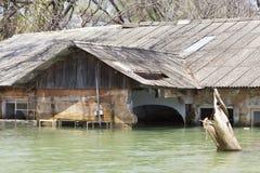 Zalewający kurort przy Jeziornym Baringo w Kenja zdjęcie royalty free