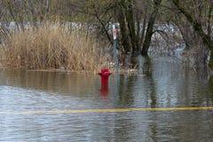 Zalewający pożarniczy hydrant fotografia royalty free