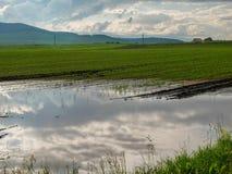 Zalewający rolniczy pola w Transylvania, Rumunia zdjęcie royalty free