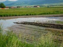 Zalewający rolniczy pola w Transylvania, Rumunia zdjęcie stock