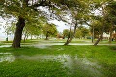 Zalewający teren w Balaton zdjęcia stock