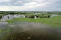 Zalewający w Volga delcie, Rosja obraz stock