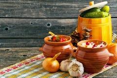 Zalewy na drewnianym tle Sauerkraut, zalewy, kiszeni pomidory, suszyć pieczarki obrazy royalty free