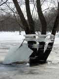 Trees with ice pieces after flood, Lithuania Stock Photo