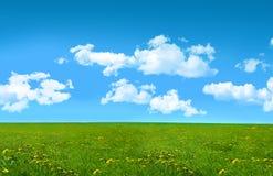 Zalige de zomerdag op een gebied van gras Royalty-vrije Stock Afbeelding