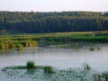 Zaliv Região do sul de Vinnytsia do erro de Reka 2013year Imagens de Stock