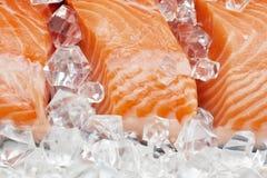 Zalm op ijs Stock Foto