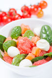 Zalmsalade met grapefruit, spinazie en mozarella met cherr royalty-vrije stock afbeelding
