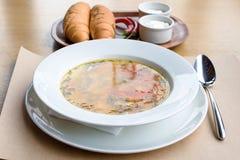 Zama traditional moldovan chicken soup Stock Photography