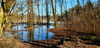 Zamarznięty jezioro na słonecznym dniu obraz stock