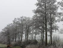 Zamarznięci drzewa na stronie droga blisko samochodowej przerwy i ławce na marznięcie ranku w holandiach fotografia royalty free