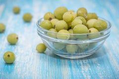Zamarznięci jagoda agresty w pucharze szkło na rocznika stole Obraz Stock