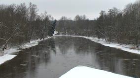 Zamarznięci lodowi kawałki płyną z wodą rzeczną między lasowymi drzewami w zima czasie zdjęcie wideo