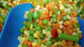 Zamarznięci warzywa w sklepie Marchewka, zielony groch, kukurudza, cebulkowa mieszanka Zdrowy naturalny jedzenie zbiory wideo