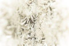 Zamarznięci wzory na okno proste tła obraz redaguje charakteru zimy nosicieli selekcyjny Zdjęcie Royalty Free