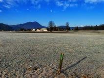 Zamarznięta łąka i wioska na jaskrawym zima dniu Obrazy Stock