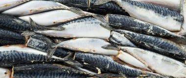 Zamarznięta ścierwo ryba w cegle dla handlu i tła Obrazy Royalty Free