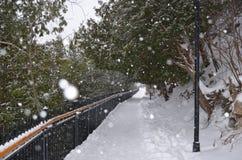 Zamarznięta bridżowa Kanadyjska przygoda Fotografia Stock