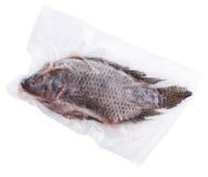 Zamarznięta Cała ryba Zdjęcia Royalty Free