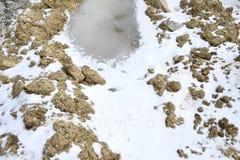 Zamarznięta kałuża na glinianej ziemi, zakrywającej z śniegiem fotografia royalty free
