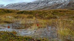 Zamarznięta kałuża na jesień śniegu i dniu zakrywał góry fotografia stock