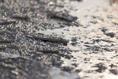 Zamarznięta kałuża na naturze w zimie zdjęcia stock
