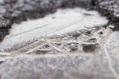 Zamarznięta kałuża na naturze w zimie fotografia royalty free