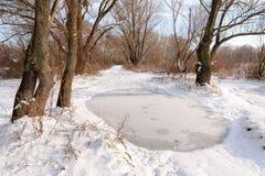 Zamarznięta kałuża po pierwszy śniegu zdjęcia stock