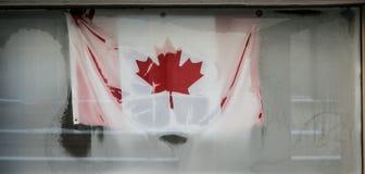 Zamarznięta kanadyjczyk flaga obrazy stock