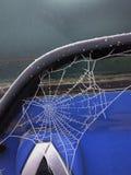Zamarznięta pająk sieć na Wczesnym zima ranku w Francja Zdjęcia Royalty Free