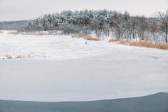 Zamarznięta rzeka po środku lasu z fishermanÑŽ zdjęcia royalty free