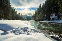 Zamarznięta rzeka w lesie Obraz Stock