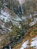 Zamarznięta siklawa z soplami i mały strumień z skałami w lasowym krajobrazie Wasserfall Niemcy obraz stock