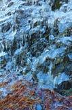 zamarznięta woda Obrazy Royalty Free