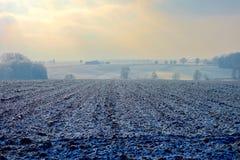 Zamarznięta ziemia uprawna i drzewa na zimnej mgławej zimie fotografia stock