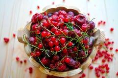 Zamarznięte porzeczkowe jagody i wiśnie z zielonymi gałąź i kawałkami lód fotografia royalty free