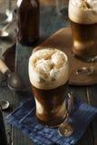 Zamarznięty Ciemny Korpulentny piwo pławik fotografia stock