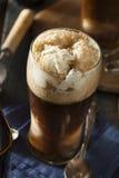 Zamarznięty Ciemny Korpulentny piwo pławik zdjęcie stock