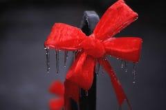 Zamarznięty Czerwony łęk z lodowymi cyklami Zdjęcia Royalty Free
