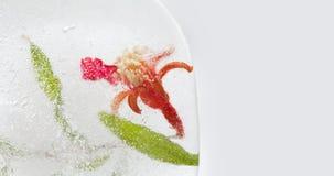 Zamarznięty granatowa kwiat z zielonym liściem, ziarna w kostce lodu Makro- widok kosmos kopii Fotografia Royalty Free