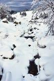Zamarznięty i śnieżysty strumień w zimie Fotografia Royalty Free