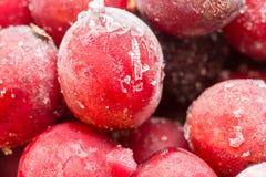 Zamarznięty jagody zbliżenie zdjęcie stock