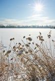 zamarznięty jezioro zdjęcie stock