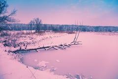 Zamarznięty jezioro przy świtem obraz stock