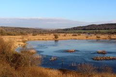Zamarznięty jezioro przy Leighton mech RSPB rezerwatem przyrody Fotografia Royalty Free