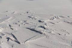 Zamarznięty lód i śnieg na Jeziornym Ontario Zdjęcia Royalty Free