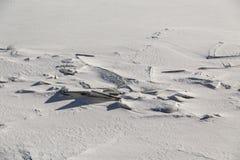 Zamarznięty lód i śnieg na Jeziornym Ontario Obrazy Stock